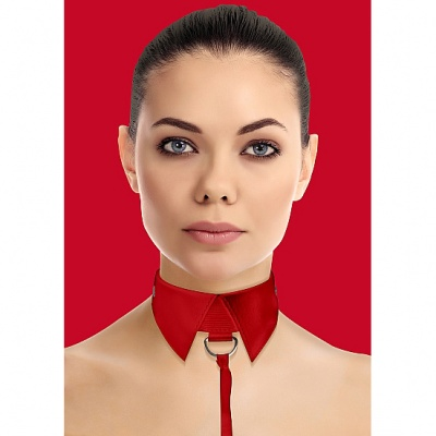 Beginner BDSM : Bondage Collars
